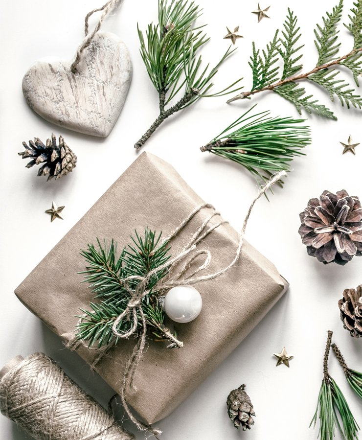 christmas gift and pine needles on white background