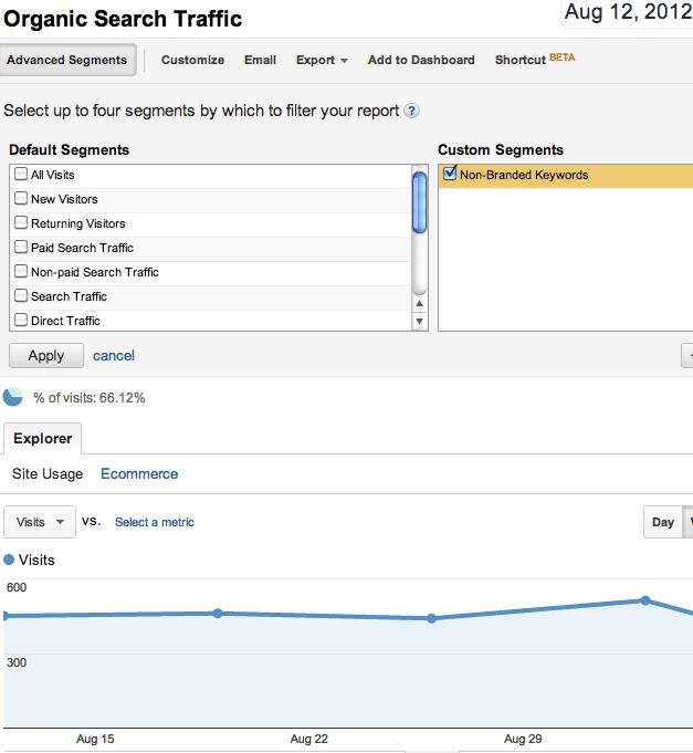 Google Analytics screenshot custom segments option