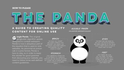 Infographic with title The Panda