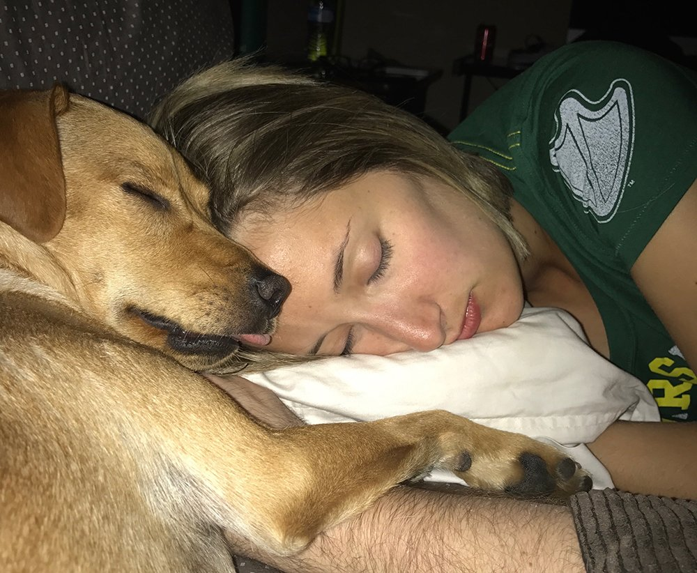 Dog sleeping with owner