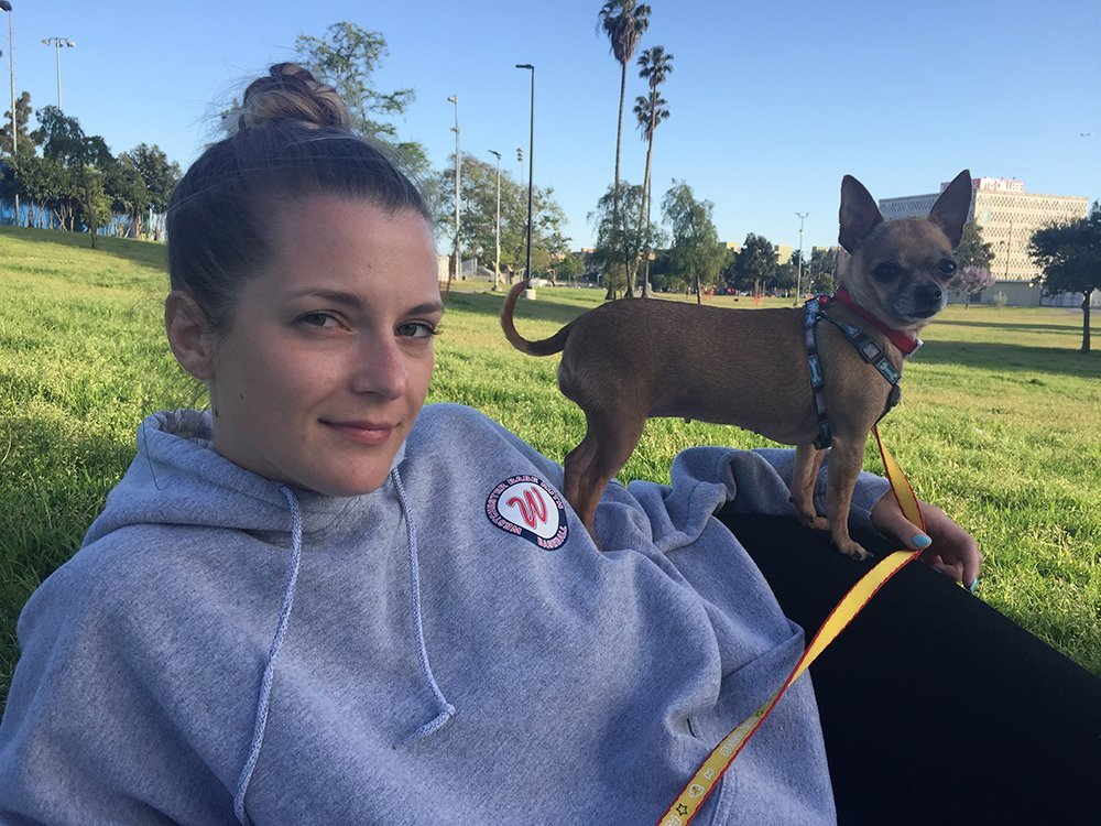 Chihuahua sitting on owners leg