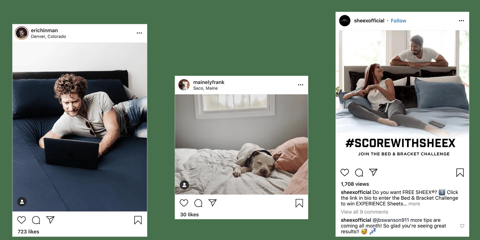 sheex instagram posts