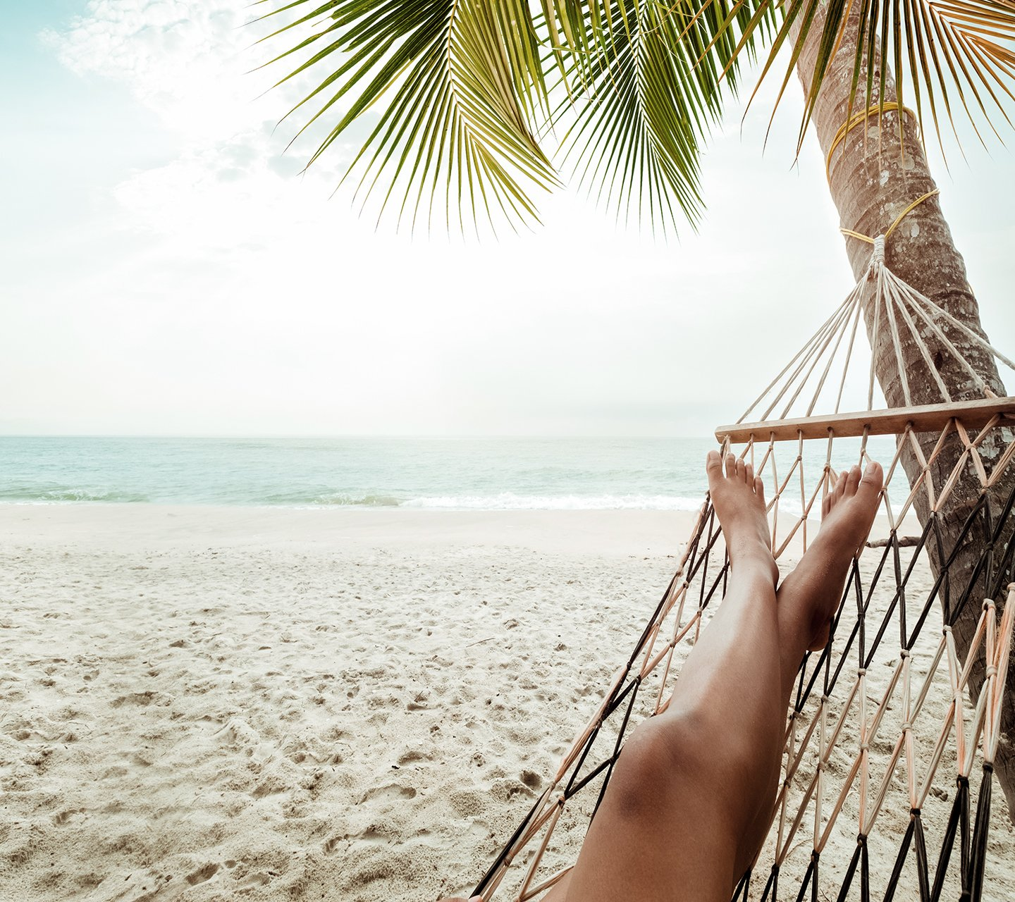 Person sitting in hammock swinging from palm tree