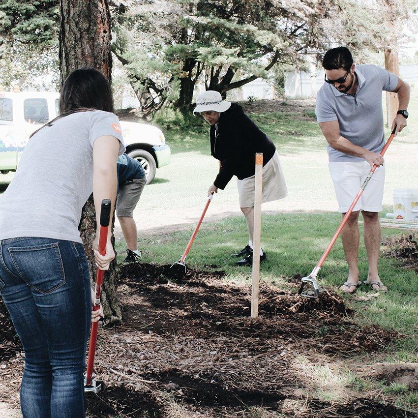 Team Members planting trees
